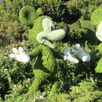 Lo que vi mientras corría medio maratón con Mickey Mouse.